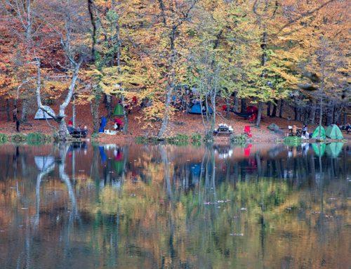 Yedigöller Milli Parkı ve Fotoğrafçılar